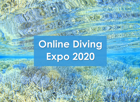 【ONLINE DIVING EXPO2020に出展】
