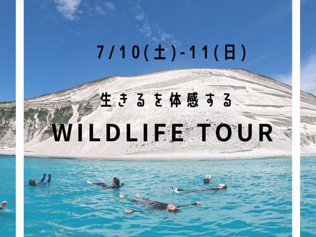 生きるを体感する「WILDLIFE TOUR」in 新島開催