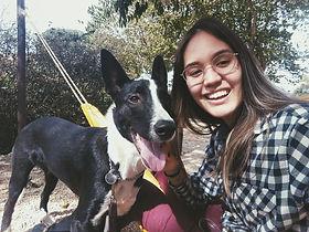 Pet Sitter/Dog Walker/Dog Day Care