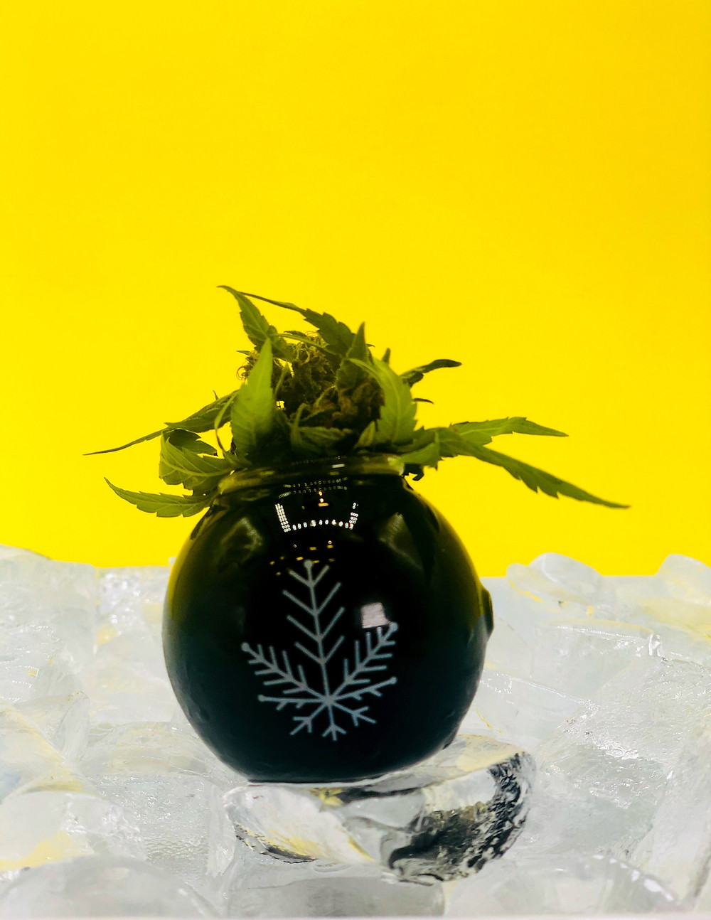 science-design-marketing-cannabis