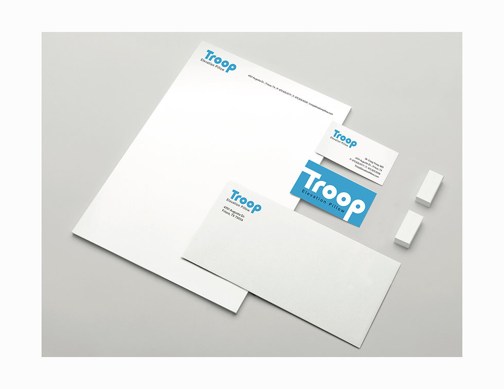 Troop Elevation Pillow_logo test.jpg