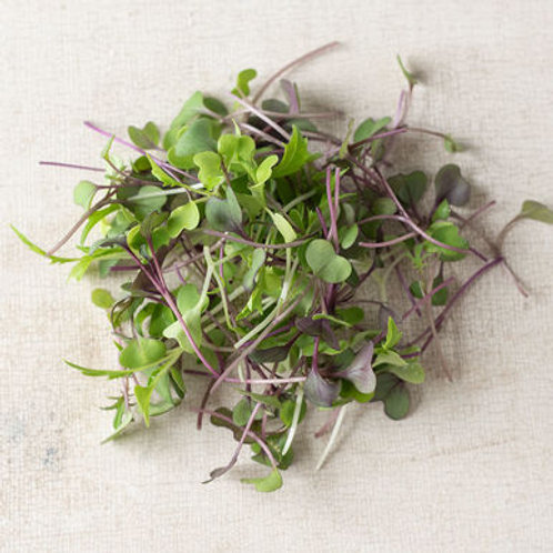 mild micro salad mix 100g