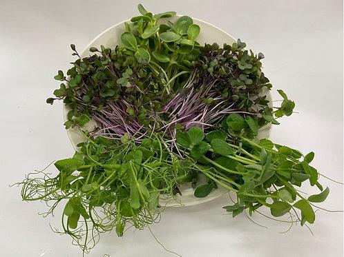 plant protein salad mix 100g