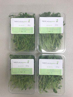 our micro greens to market