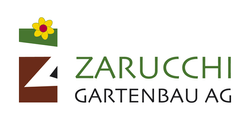 zarucchi