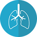 lungs-2803208_640.png