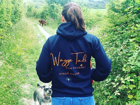 Waggie Tails Dog Walking in Dunstable.  Dog Walking in Dunstable Downs