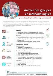 Formation animer des groupes en mode agile