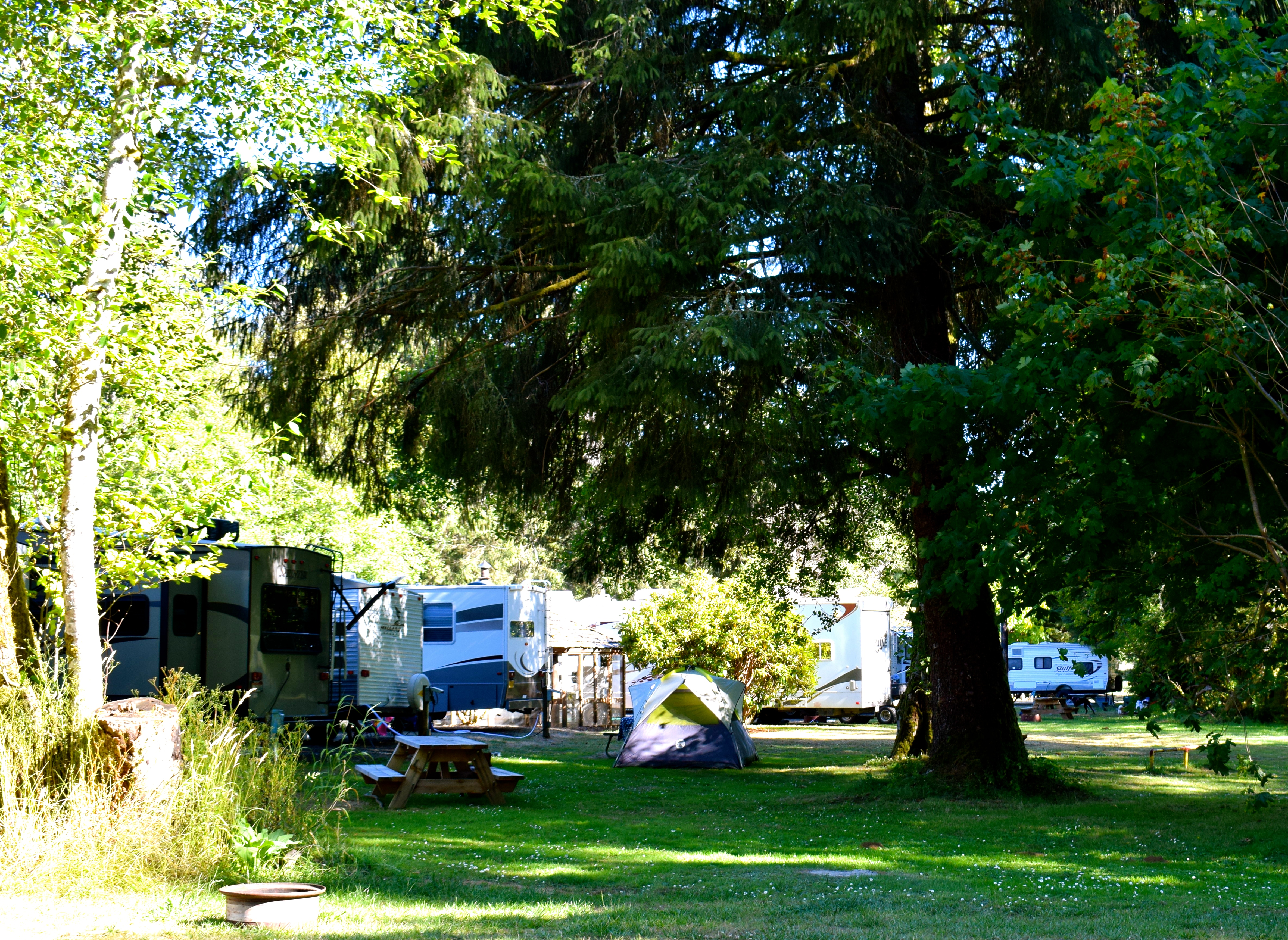 Camp or RV