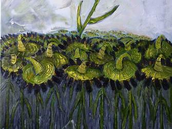 Sunflowers, campo di girasoli