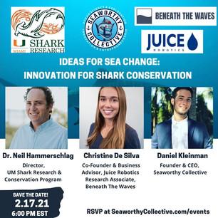 Ideas for Sea Change: Innovation for Shark Conservation