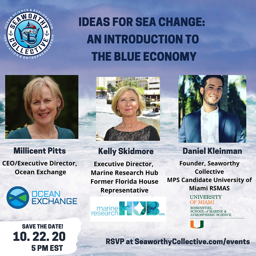 Ideas for Sea Change: An Introduction to the Blue Economy
