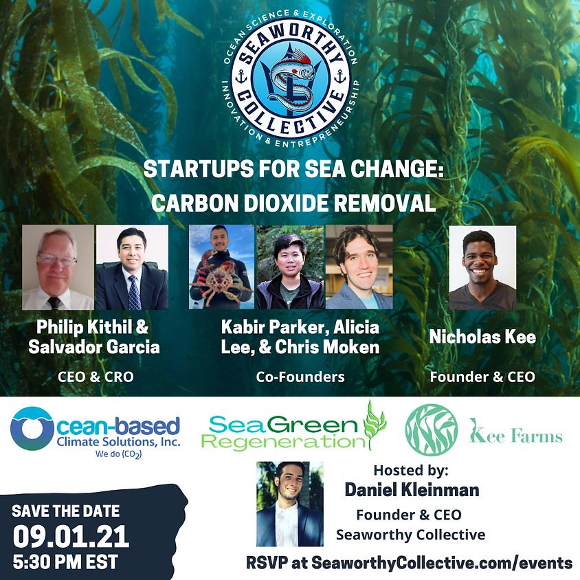 Startups for Sea Change: Carbon Dioxide Removal