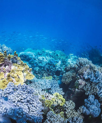 Blue ocean in nusa island retreat