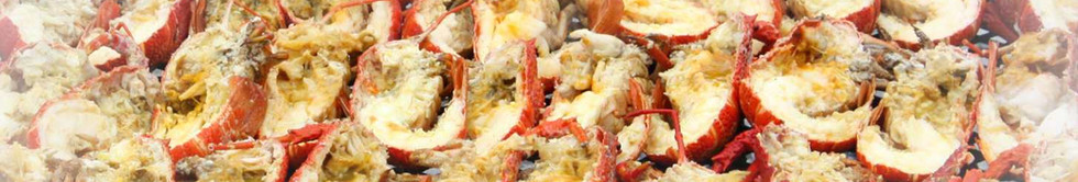 crayfish1.1.jpg