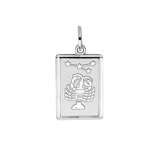 Zilveren Graveerplaat met Kreeft