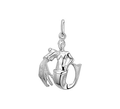 Zilveren Sterrenbeeldhanger Waterman