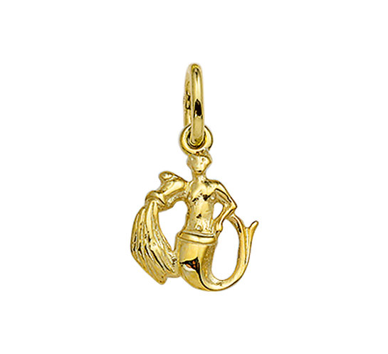 Gouden Sterrenbeeldhanger Waterman
