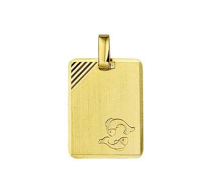 Gouden Graveerplaat met Vissen