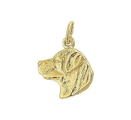 Gouden Rottweiler