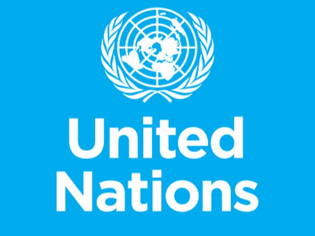 The UN Common Position to Address Global Corruption: Reflections on Civil Society Input