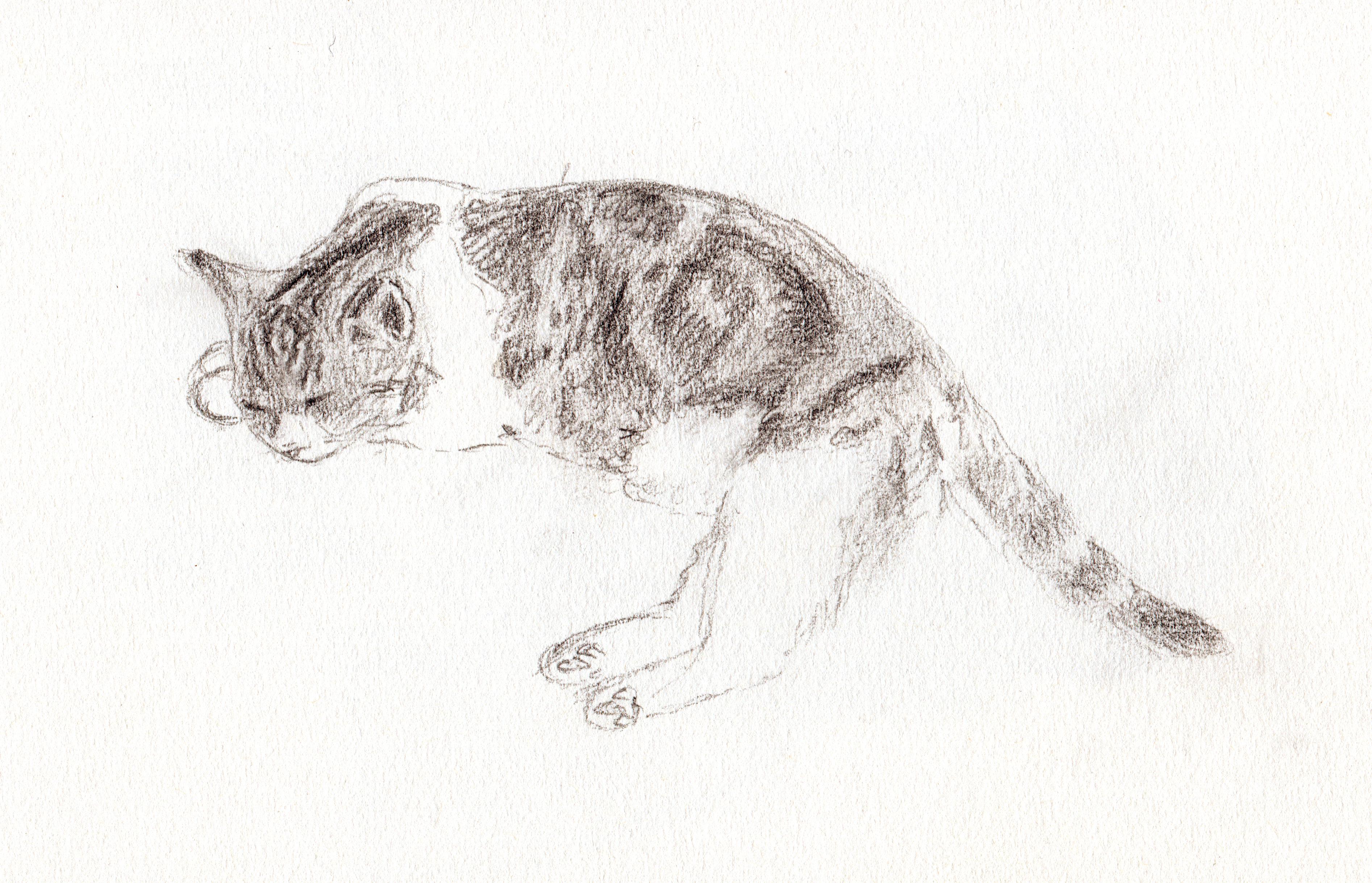 lilith sketch