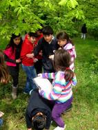 yaparak-ogren-ilkokul--may-2011-038.jpg