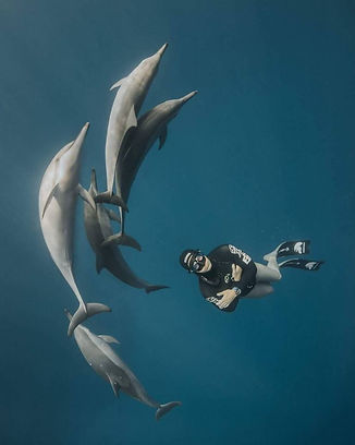Deepest American freediver swims with dolphins