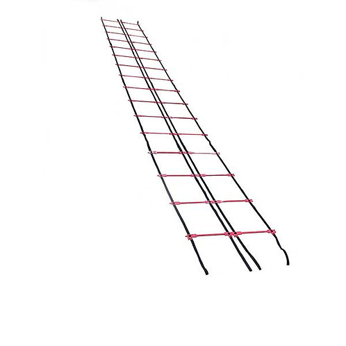 Two Separate Ladders