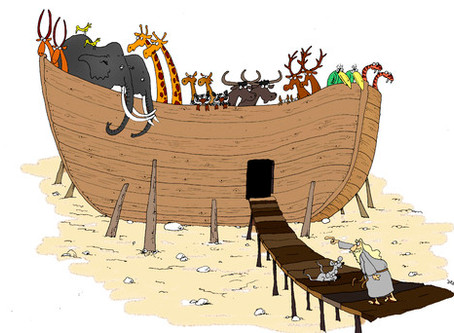 Noah's Ark was Built Before the Rains