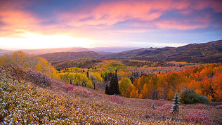 fall_buff_pass_steamboat_springs_524a290