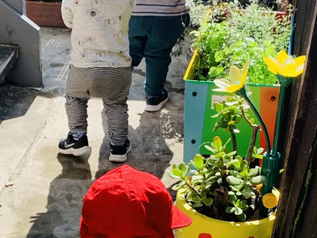 Happy Kids Family Day Care's Pathway Garden
