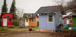 Opportunity Village (Eugene)
