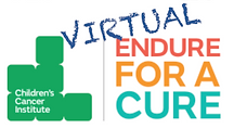 SAS_Virtual-Endure-CCI.png