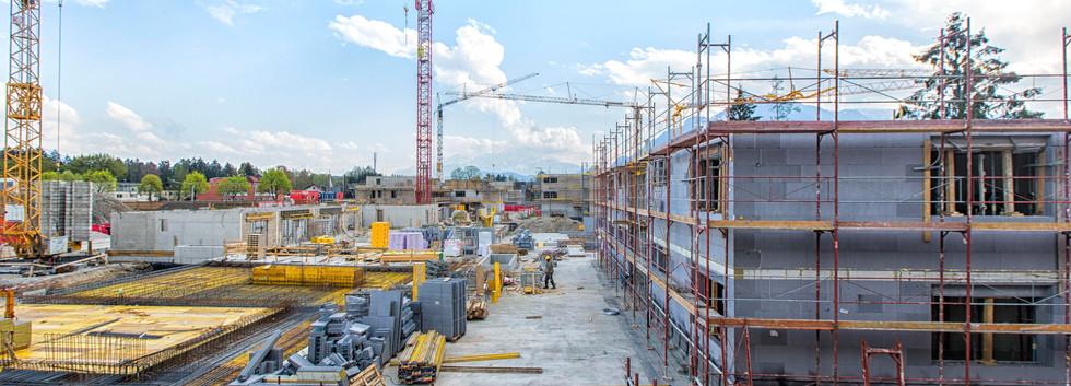 Bauleitung, Projektmanagement