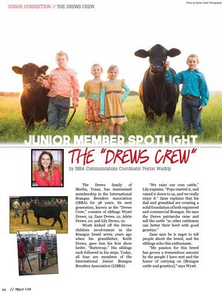 The Drews Crew