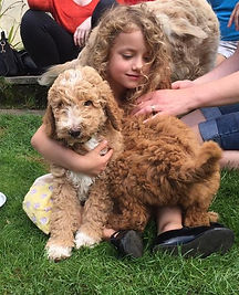 Snuggles with Emma and the Doodles