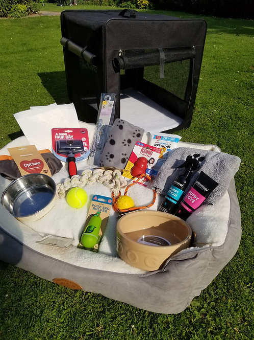 Luxury Puppy Hamper