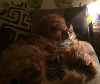 Areya cuddling with Kevin