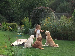 Emma playing with Colin, Areya and Seren