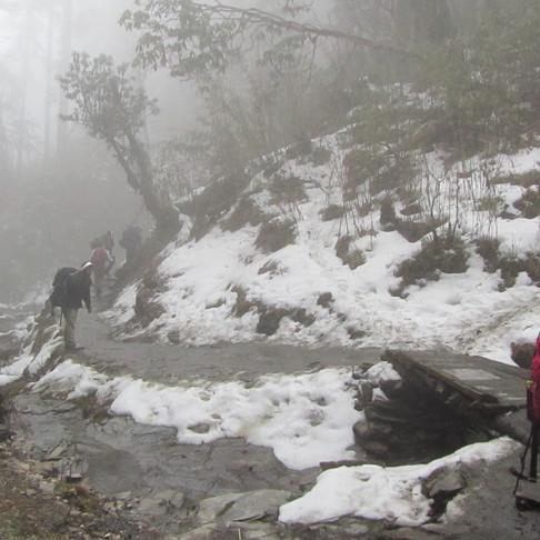 Somewhere in Ghorepani, Nepal