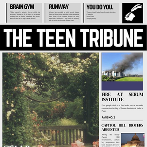 ISSUE 17 | 24th January 2021