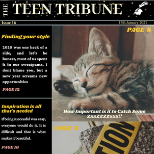 ISSUE 16   17th January 2021