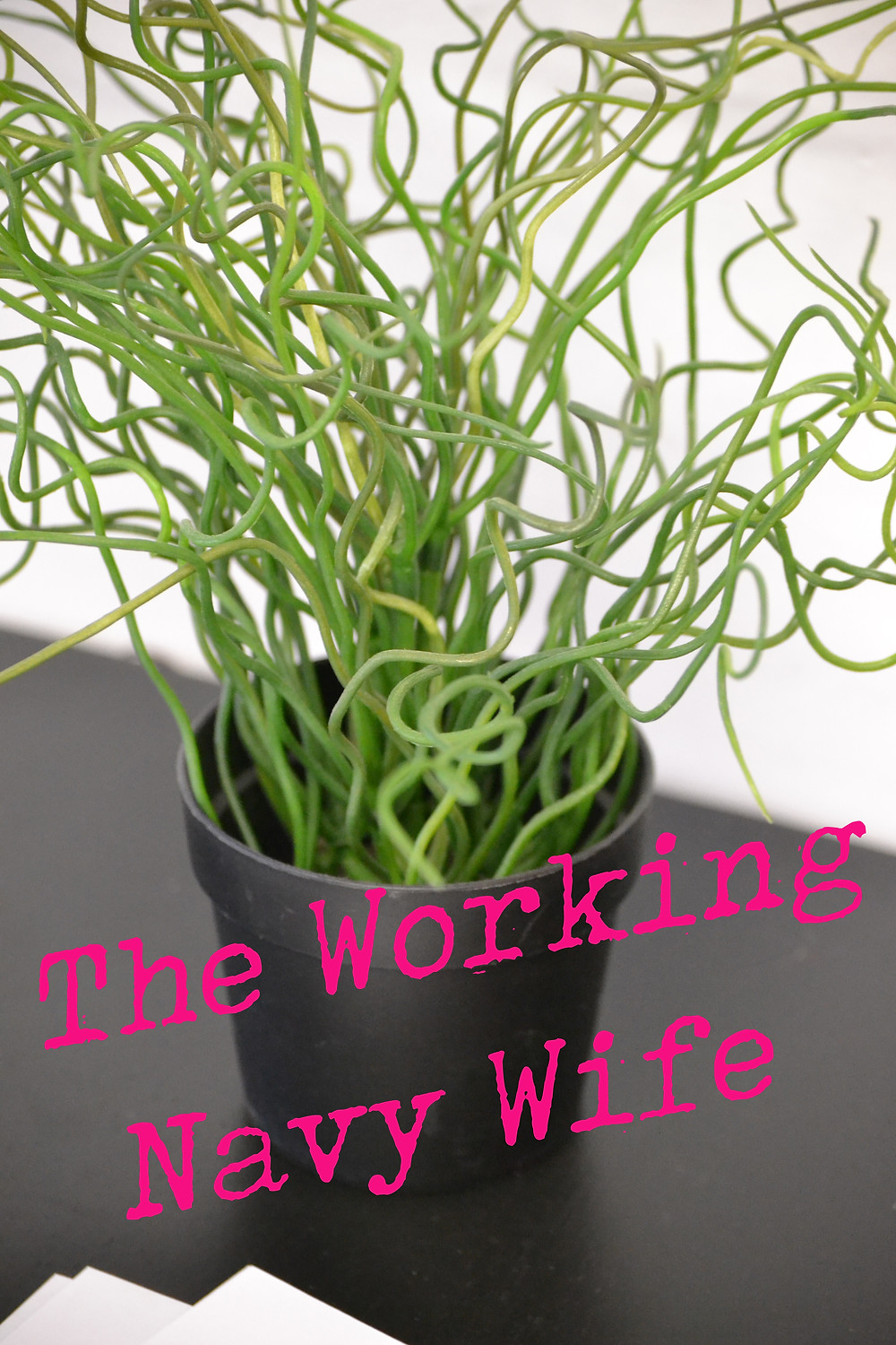 working navy wife plant graphic
