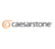logo_caesarstone_299x263.png