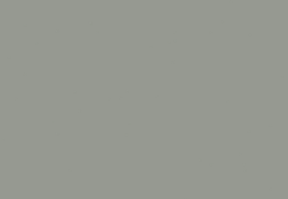 Cinza Nimbus Silestone®