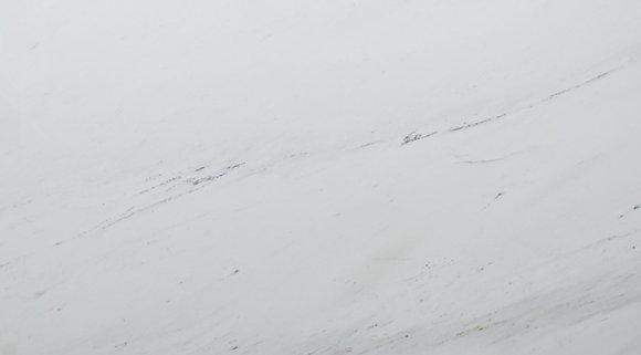Branco Sivec Dove Importado