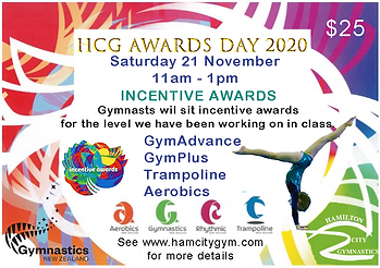 Incentive Awards 2020 HCG.png