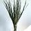 Thumbnail: Wild Grass - Emerald