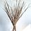 Thumbnail: Wild Grass - Natural